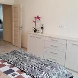 Grushevka Apartment — фото 2