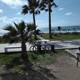 Paphos Inn — фото 1