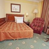 Гостиница Carlsbad Plaza Medical Spa & Wellness — фото 3