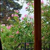 Habitaciones privadas en el chalet Villa La Luna con desayuno — фото 3