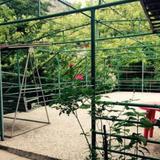 Green Borjomi — фото 2