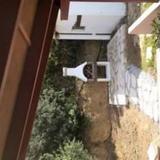 Marys Stone Villa — фото 2
