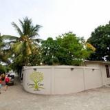 Гостиница Canopy Cove — фото 2