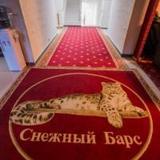 Гостиница Снежный Барс Домбай — фото 3