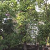 квартира на Динамо — фото 3