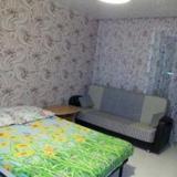 Апартаменты на Семьи Шамшиных 90/5 — фото 1