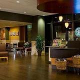 Гостиница Washington Marriott at Metro Center — фото 1