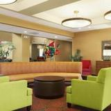 Гостиница Homewood Suites by Hilton Tampa-Brandon — фото 1