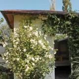 Гостевой Дом У Старого Абрикоса — фото 2
